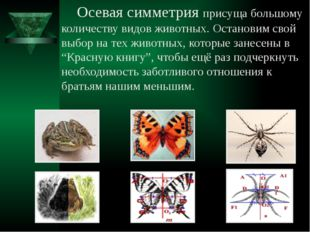 Осевая симметрия присуща большому количеству видов животных. Остановим свой