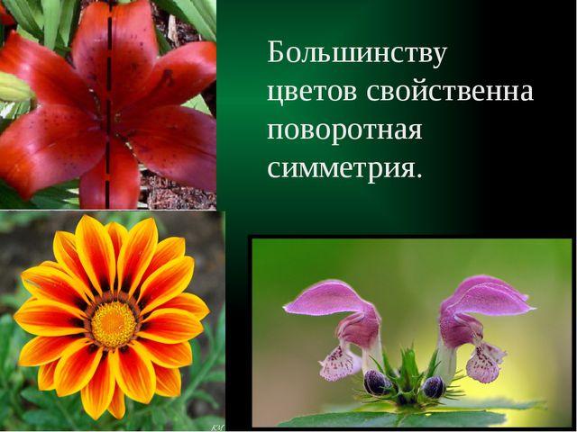 Большинству цветов свойственна поворотная симметрия.