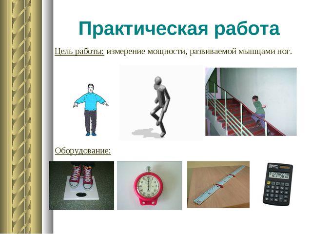 Практическая работа Цель работы: измерение мощности, развиваемой мышцами ног....