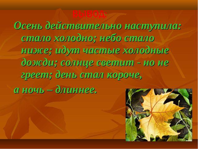 Осень действительно наступила: стало холодно; небо стало ниже; идут частые хо...