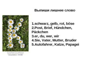 Выпиши лишнее слово 1.schwarz, gelb, rot, böse 2.Post, Brief, Hündchen, Päckc