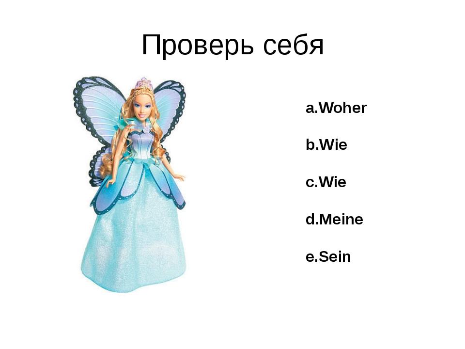 Проверь себя a.Woher b.Wie c.Wie d.Meine e.Sein