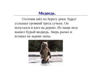 Охотник шёл по берегу реки. Вдруг услышал громкий треск сучьев. Он испугался
