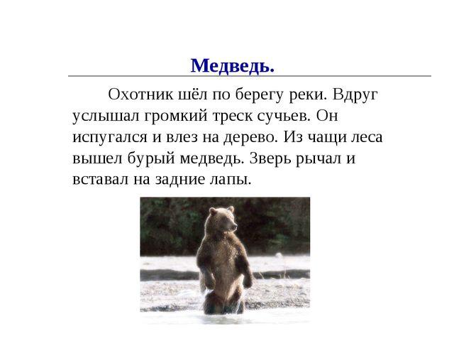 Охотник шёл по берегу реки. Вдруг услышал громкий треск сучьев. Он испугался...