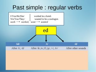 Past simple : regular verbs I/You/He/She/ worked in a hotel. We/You/They/ wan