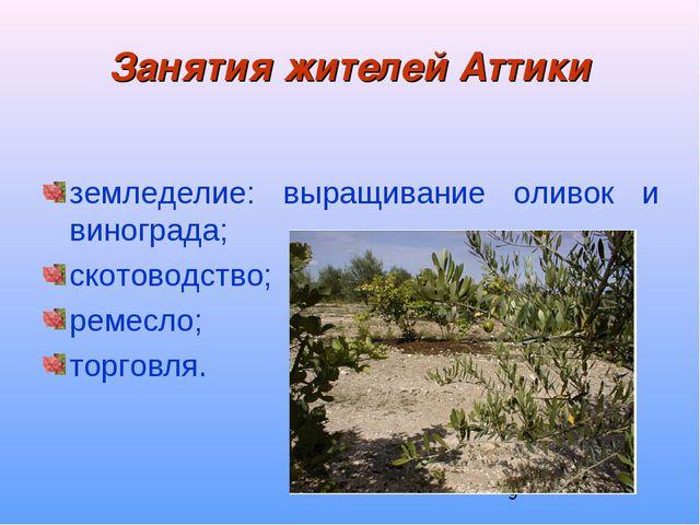 Занятия жителей Аттики земледелие: выращивание оливок и винограда; скотоводст...