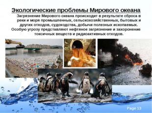 Экологические проблемы Мирового океана Загрязнение Мирового океана происходит