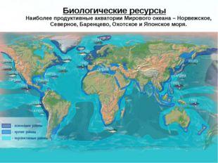 Биологические ресурсы Наиболее продуктивные акватории Мирового океана – Норве