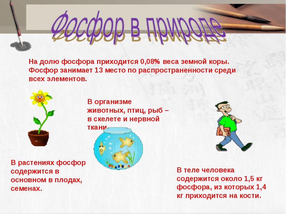 На долю фосфора приходится 0,08% веса земной коры. Фосфор занимает 13 место п...