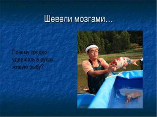 Шевели мозгами… Почему трудно удержать в руках живую рыбу?