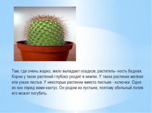 Там, где очень жарко, мало выпадает осадков, раститель- ность бедная. Корни у