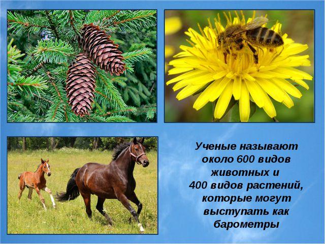 Ученые называют около 600 видов животных и 400 видов растений, которые могут...