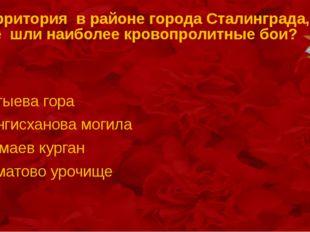 Территория в районе города Сталинграда, где шли наиболее кровопролитные бои?