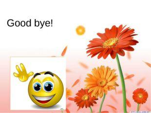 Good bye!