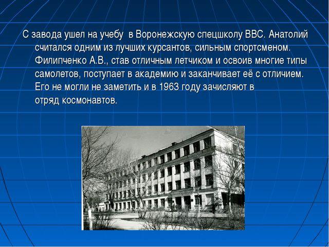 С завода ушел на учебу в Воронежскую спецшколу ВВС. Анатолий считался одним...