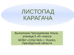 Выполнила Проскурякова Ольга, ученица 3 «б» класса МОБУ «СОШ №3» г. Ясного, О