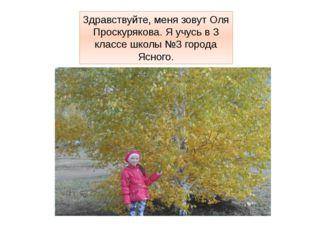Здравствуйте, меня зовут Оля Проскурякова. Я учусь в 3 классе школы №3 города