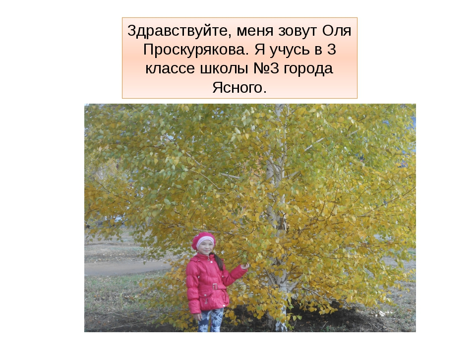 Здравствуйте, меня зовут Оля Проскурякова. Я учусь в 3 классе школы №3 города...