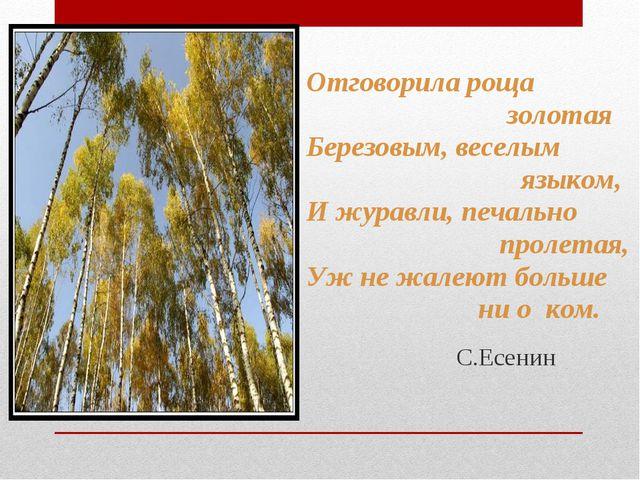 Отговорила роща золотая Березовым, веселым языком, И журавли, печально пролет...