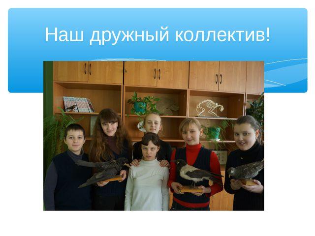 Наш дружный коллектив!