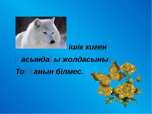 ішік киген Қасындағы жолдасының Тоңғанын білмес.