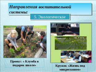 Направления воспитательной системы: 5. Экологическое Проект: « Клумба в подар