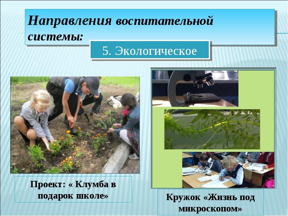 Направления воспитательной системы: 5. Экологическое Проект: « Клумба в подар...