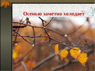 Осенью заметно холодает