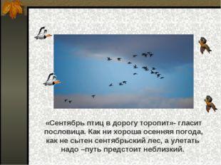 «Сентябрь птиц в дорогу торопит»- гласит пословица. Как ни хороша осенняя по