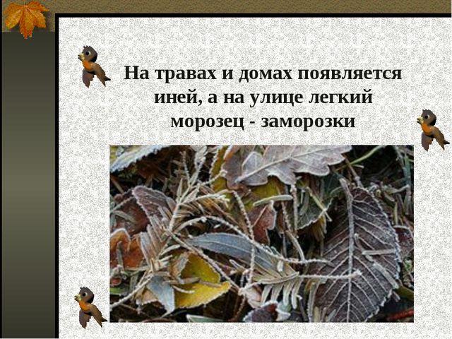 На травах и домах появляется иней, а на улице легкий морозец - заморозки