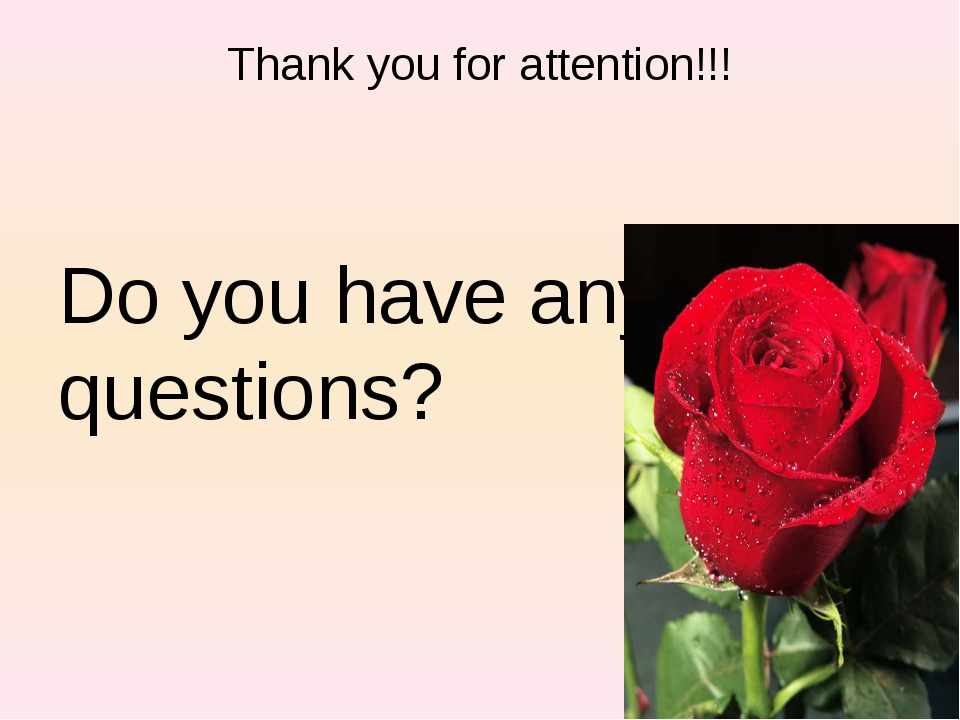Thank you for attention!!! Do you have any questions?