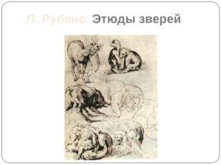 П. Рубенс. Этюды зверей