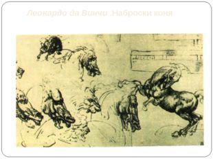 Леонардо да Винчи .Наброски коня