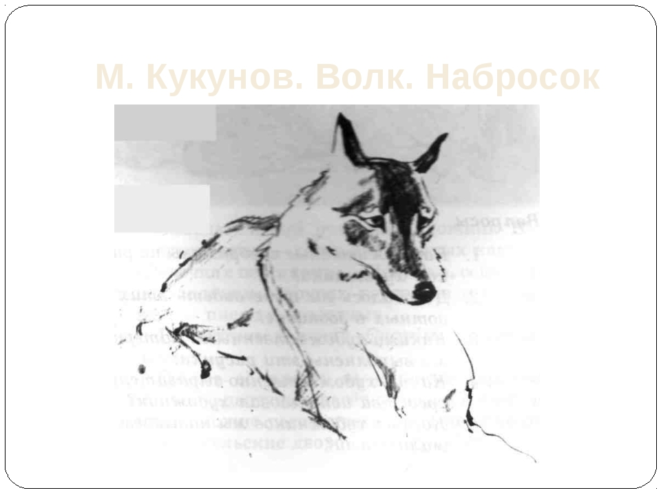 М. Кукунов. Волк. Набросок