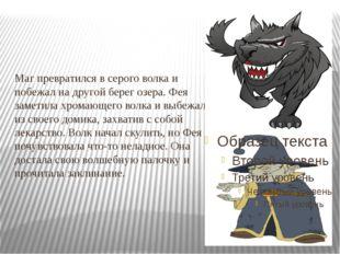 Маг превратился в серого волка и побежал на другой берег озера. Фея заметила