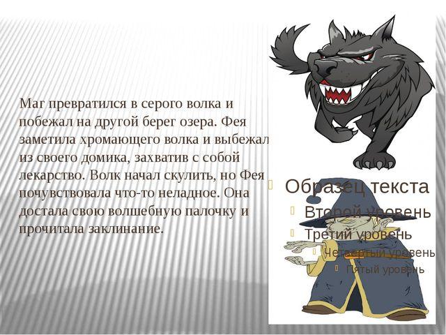 Маг превратился в серого волка и побежал на другой берег озера. Фея заметила...
