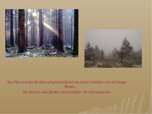 Das Klima auf dem Brocken entspricht aufgrund des kurzen Sommers und sehr lan...