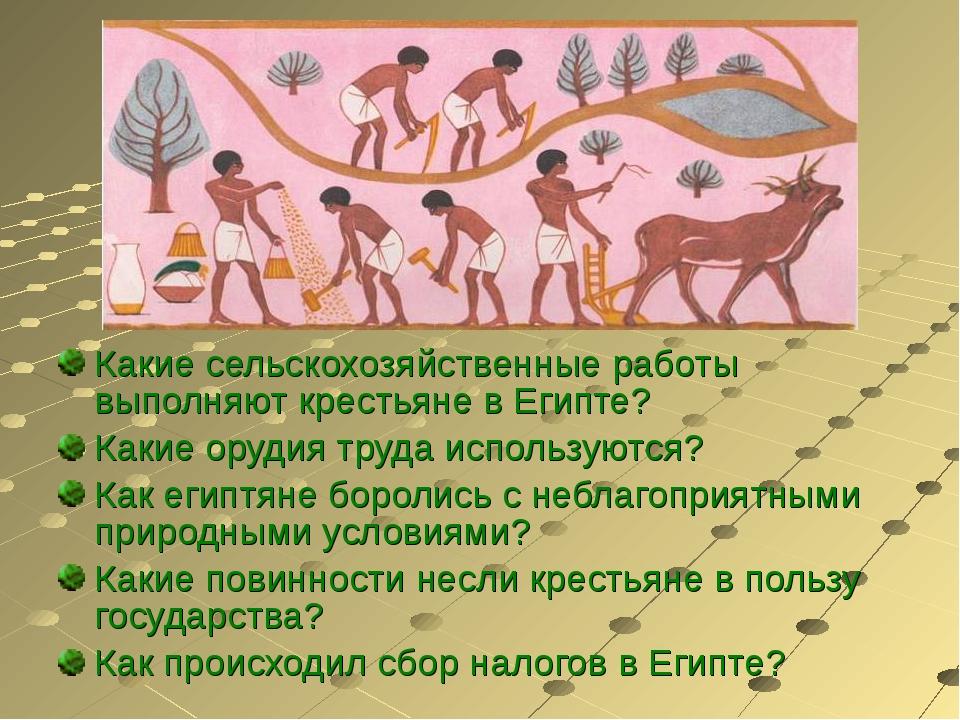 Какие сельскохозяйственные работы выполняют крестьяне в Египте? Какие орудия...