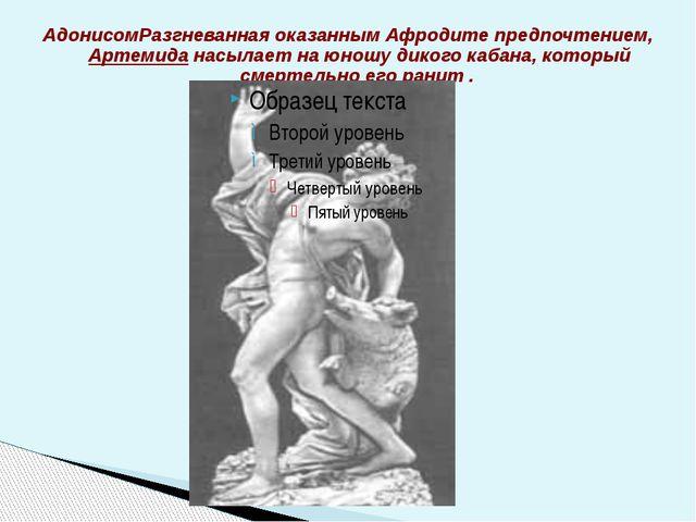 АдонисомРазгневанная оказанным Афродите предпочтением, Артемида насылает на ю...