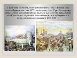 В древности на месте Кремля шумел сосновый бор, и поэтому холм назвали Борови