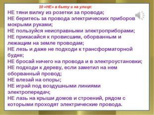 10 «НЕ» в быту и на улице: НЕ тяни вилку из розетки за провода; НЕ беритесь