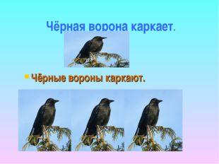 Чёрная ворона каркает. Чёрные вороны каркают.
