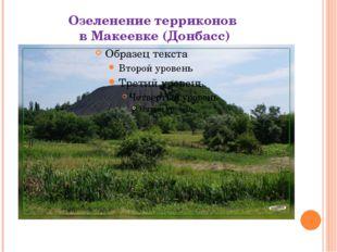 Озеленение терриконов в Макеевке (Донбасс)