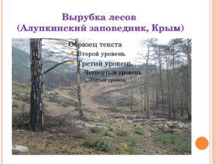 Вырубка лесов (Алупкинский заповедник, Крым)