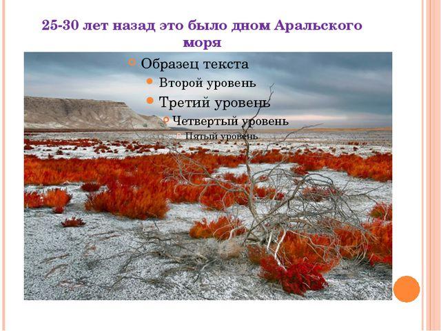 25-30 лет назад это было дном Аральского моря