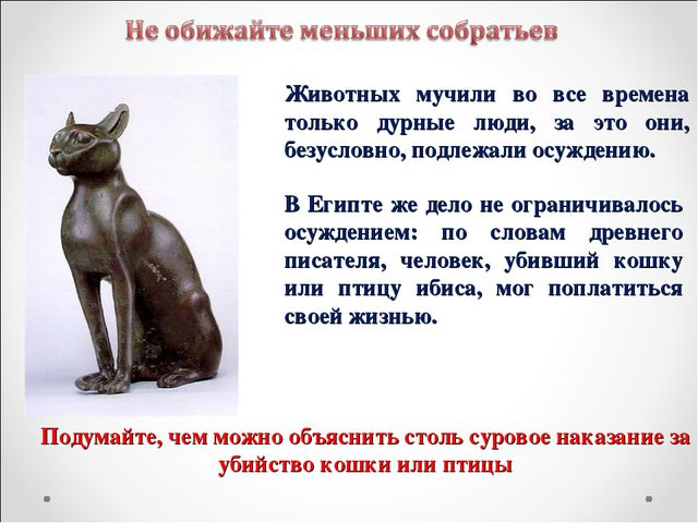 Животных мучили во все времена только дурные люди, за это они, безусловно, по...