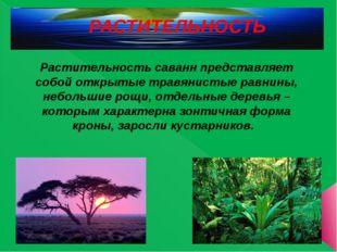 РАСТИТЕЛЬНОСТЬ Растительность саванн представляет собой открытые травянистые