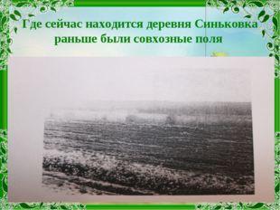 Где сейчас находится деревня Синьковка раньше были совхозные поля