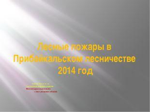 Лесные пожары в Прибайкальском лесничестве 2014 год Быкова Лиза 2 «а» кл. Тур