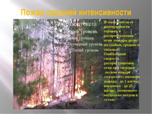 Пожар средней интенсивности В зависимости от интенсивности горения и распрост
